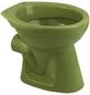 CORNAT Stand WC »Moosgrün«, Tiefspüler, moosgrün, mit Spülrand-Thumbnail