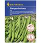 KIEPENKERL Stangenbohne vulgaris var. vulgaris Phaseolus »Eva«-Thumbnail