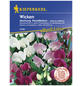 KIEPENKERL Staudenwicke, Lathyrus latifolius, Samen, Blüte: mehrfarbig-Thumbnail