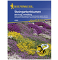 KIEPENKERL Steingartenblume, Samen, Blüte: mehrfarbig-Thumbnail