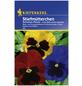 KIEPENKERL Stiefmütterchen, Viola-Wittrockiana-Hybriden , Samen, Blüte: mehrfarbig-Thumbnail