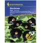 KIEPENKERL Stockrose, Alcea ficifolia, Samen, Blüte: schwarz-Thumbnail