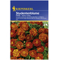 KIEPENKERL Studentenblume, Tagetes patula, Samen, Blüte: rot/orange-Thumbnail