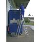 KRAUSE Stufen-Stehleiter »STABILO«, Anzahl Sprossen 8-Thumbnail