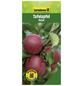 GARTENKRONE Tafelapfel, Malus domestica »Rajka«, Früchte: süß, zum Verzehr geeignet-Thumbnail