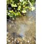 OASE Teichbelüfter »AquaOxy«, geeignet für: Teiche-Thumbnail