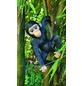 GRANIMEX Teichfigur »Jacob«, Schimpanse, Polystone, bunt-Thumbnail