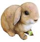 GRANIMEX Teichfigur »Pummel«, Kaninchen, Polystone, braun/weiß-Thumbnail