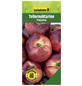 GARTENKRONE Tellernektarine, Prunus nuciperisa »Platarina«, Früchte: süß, zum Verzehr geeignet-Thumbnail