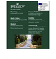 Teppichwacholder Juniperus horizontalis »Golden Carpet«-Thumbnail