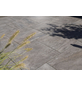 MR. GARDENER Terrassenplatte »Tolisso«, aus Beton, Kanten: scharfkantig-Thumbnail