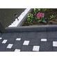 EHL Tiefboard, BxHxL: 8 x 25 x 100 cm, Beton-Thumbnail
