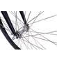HAWK Tiefeinsteiger »Comfort Premium Plus«, 28 Zoll, 3-Gang, Unisex-Thumbnail