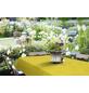 Tischdecke, BxL: 110 x 140 cm, Blumen, gelb-Thumbnail