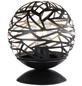 wofi® Tischleuchte schwarz/goldfarben mit 60 W, H: 24 cm, E27 ohne Leuchtmittel-Thumbnail