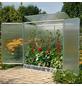 BECKMANN Tomaten-Gewächshaus, 1,232 m², Kunststoff/Aluminium, winterfest-Thumbnail