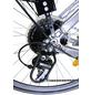 CHALLENGE Trekkingrad, 26 Zoll, 24-Gang, Damen-Thumbnail