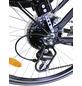 CHALLENGE Trekkingrad, 28 Zoll, 24-Gang, Herren-Thumbnail
