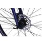 HAWK Trekkingrad »Super Deluxe«, 28 Zoll, 8-Gang, Herren-Thumbnail