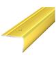 CARL PRINZ Treppenkantenprofil »NOVA«, LxBxH: 1000 x 30 x 20 mm-Thumbnail