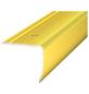 CARL PRINZ Treppenkantenprofil »NOVA«, LxBxH: 1000 x 35 x 30 mm-Thumbnail
