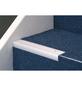 CARL PRINZ Treppenkantenprofil »NOVA«, silberfarben, BxLxH: 45 x 1000 x 23 mm-Thumbnail