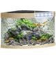 JUWEL AQUARIUM Trigon 190 LED Aquarium-Thumbnail