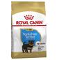 ROYAL CANIN Trockenfutter »BHN«, Inhalt: 1,5 kg-Thumbnail