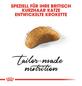 ROYAL CANIN Trockenfutter »FBN British Shorthair«, 2 kg-Thumbnail