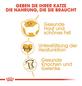 ROYAL CANIN Trockenfutter »FBN Ragdoll Adult«, 2 kg-Thumbnail