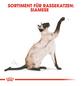 ROYAL CANIN Trockenfutter »FBN Siamese Adult«, 2 kg-Thumbnail