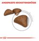 ROYAL CANIN Trockenfutter »FCN Hairball Care«, 4 kg-Thumbnail