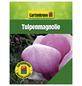 GARTENKRONE Tulpenmagnolie, Magnolia soulangiana, hellrosa, winterhart-Thumbnail