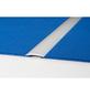 CARL PRINZ Übergangsprofil, BxHxL: 40 x 4 x 1000 mm, silberfarben-Thumbnail