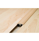 CARL PRINZ Übergangsprofil, edelstahlfarben, BxLxH: 32 x 900 x 14 mm-Thumbnail
