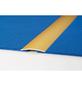 CARL PRINZ Übergangsprofil silberfarben, BxLxH: 60 x 1000 x 5 mm-Thumbnail