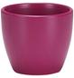 SCHEURICH Übertopf, Breite: 7 cm, weiß/grün/taupe/pink, Keramik-Thumbnail