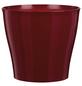SCHEURICH Übertopf »BRIGHT«, Breite: 18,5 cm, rot, Kunststoff-Thumbnail