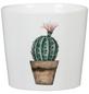 SCHEURICH Übertopf »CACTUS GARDEN«, Breite: 9 cm, weiß/beige/braun/grün, Keramik-Thumbnail