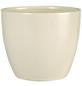 SCHEURICH Übertopf, ØxH: 22 x 19,5 cm, creme, Keramik-Thumbnail