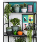 SCHEURICH Übertopf »SHADES«, ØxH: 13 x 11,5 cm, weiß/grün, Keramik-Thumbnail