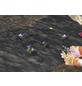 MR. GARDENER Unkrautvlies, schwarz, BxL: 0,9 x 10 m-Thumbnail
