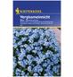 KIEPENKERL Vergissmeinnicht, Myosotis sylvatica, Samen, Blüte: blau-Thumbnail