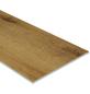 HWZ INTERNATIONAL Vinylboden »SLY XX-LARGE«, BxL: 300 x 1510 mm, braun-Thumbnail