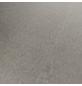 HWZ INTERNATIONAL Vinylboden »STARCLIC STONE 4.2«, BxLxS: 304,8 x 605 x 4,2 mm, grau-Thumbnail