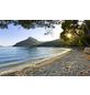 KOMAR Vliestapete »Lonely Paradise«, Breite 450 cm, seidenmatt-Thumbnail