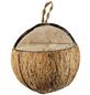 ELLES Vogelfutter »3/4 Kokosnuss«, Erdnuss, 22x400 g-Thumbnail