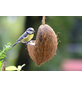 Vogelfutter, Erdnuss / Sonnenblumenkerne, Futtermix-Thumbnail