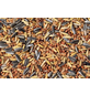 Vogelfutter, Getreide, 20000 g-Thumbnail