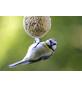 Vogelfutter, Insekten, 9000 g-Thumbnail